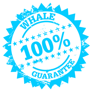 Grafikk - Whale Guarantee Blue 300x300